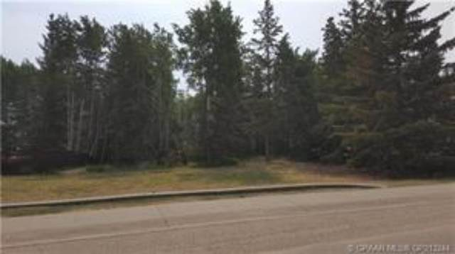 13301 92 Street, Peace River, AB T8S 1X1 (#A1009859) :: Canmore & Banff