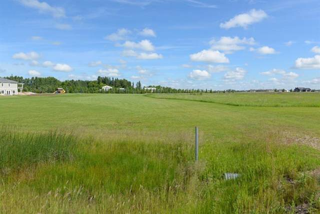 6 Carlisle Road, Rural Stettler County, AB T0C 2L0 (#A1011348) :: Canmore & Banff