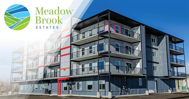 499 Meadow Lake Court E #201, Brooks, AB T1R 0Y7 (#A1011358) :: Canmore & Banff