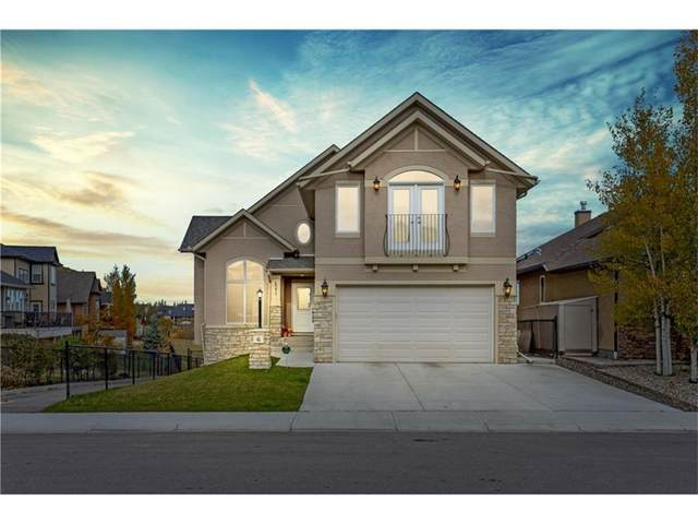 6 Cimarron Springs Way, Okotoks, AB T1S 0J3 (#A1011899) :: Canmore & Banff