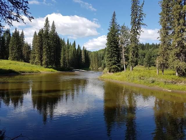 Twp Rd 29.00A, Rural Bighorn M.D., AB T0M 2E0 (#A1013420) :: Canmore & Banff