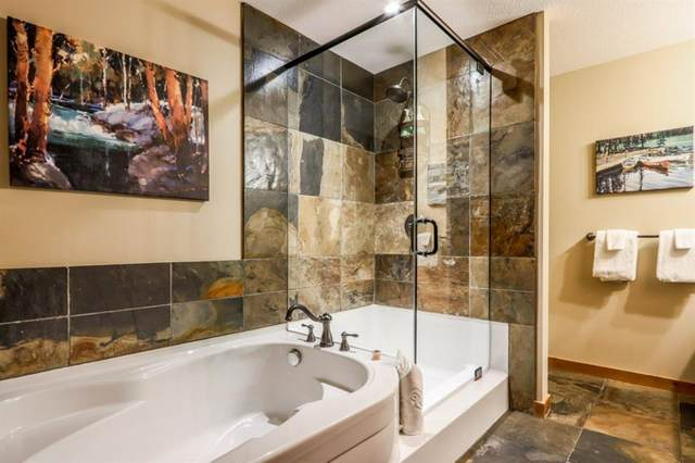 379 Spring Creek Drive #306, Canmore, AB T1W 0G8 (#A1014900) :: Canmore & Banff