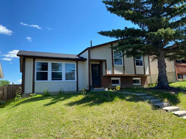 48 Beddington Rise NE, Calgary, AB T3K 1N2 (#A1015217) :: Redline Real Estate Group Inc