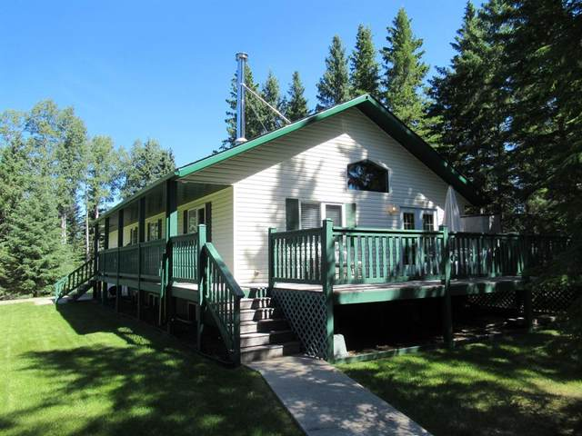5 Sunnynook Drive, Rural Clearwater County, AB T0M 0M0 (#A1017280) :: Canmore & Banff