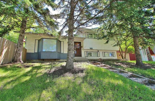 1424 29 Street NW, Calgary, AB T2N 2V1 (#A1018034) :: Canmore & Banff