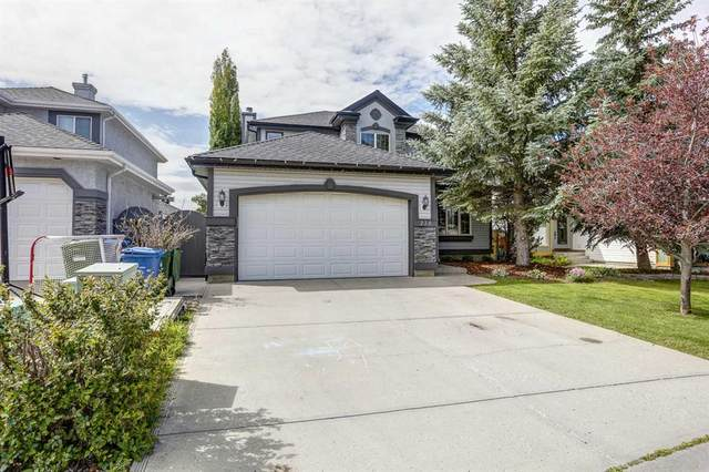 238 Douglasview Court SE, Calgary, AB T2Z 2S7 (#A1018274) :: Redline Real Estate Group Inc