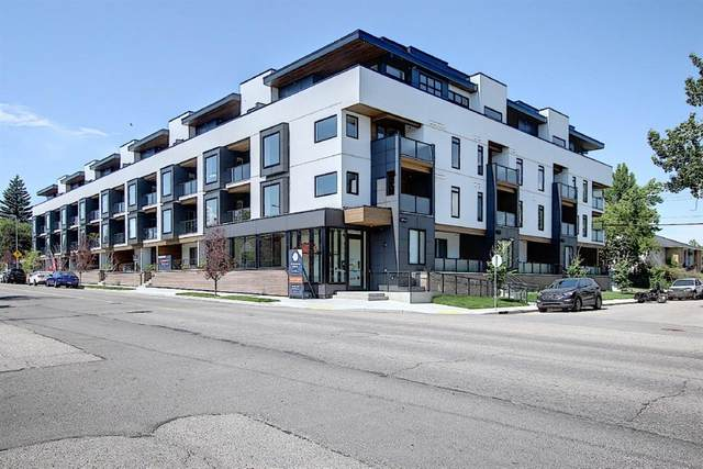 3375 15 Street SW #203, Calgary, AB T2T 4A2 (#A1018474) :: Redline Real Estate Group Inc