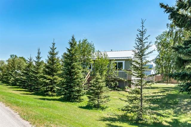 5031 55 Avenue, Stavely, AB T0L 0T0 (#A1018487) :: Redline Real Estate Group Inc