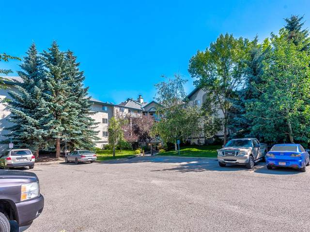 20 Dover Point SE #302, Calgary, AB T2B 3K3 (#A1018762) :: Calgary Homefinders