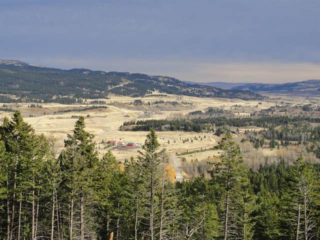 110 Adanac Rise, Crowsnest Pass, AB T0K 1C0 (#A1018766) :: Calgary Homefinders