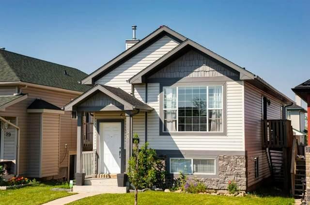 33 Saddlefield Drive NE, Calgary, AB T3J 4Z9 (#A1018872) :: Redline Real Estate Group Inc