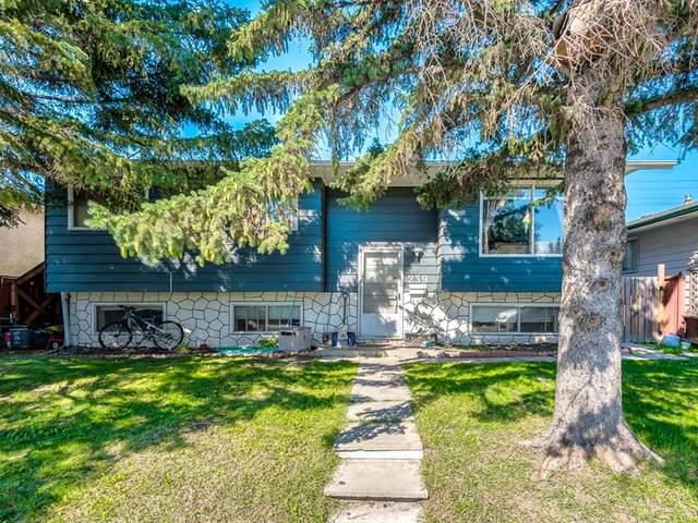 239 Penbrooke Way SE, Calgary, AB T2A 3S7 (#A1018945) :: Redline Real Estate Group Inc