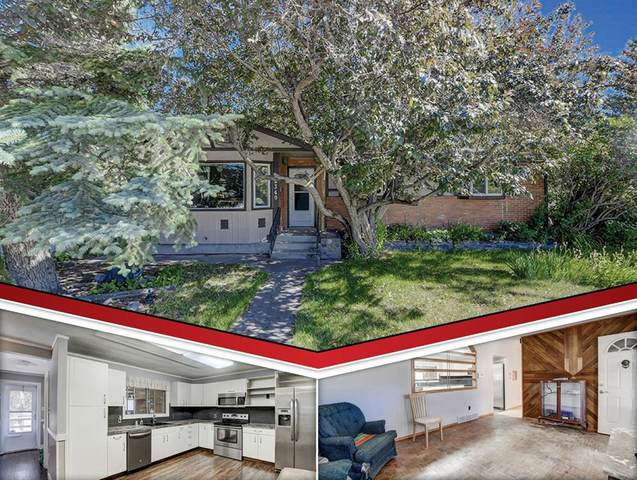 8340 Bowness Road NW, Calgary, AB T3B 0H6 (#A1020175) :: Redline Real Estate Group Inc
