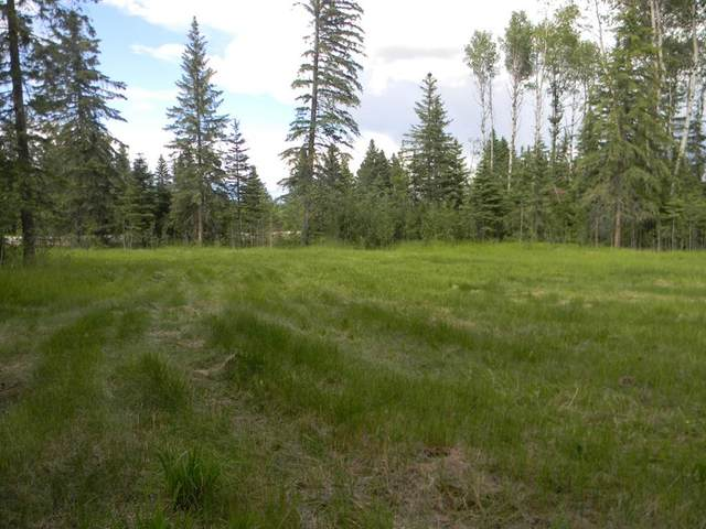 119 Meadow Ponds Drive, Rural Clearwater County, AB T4T 1A7 (#A1021029) :: Redline Real Estate Group Inc