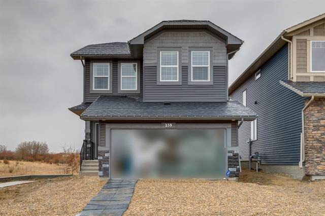 239 Willow Place, Cochrane, AB T4C 2S6 (#A1021040) :: Canmore & Banff
