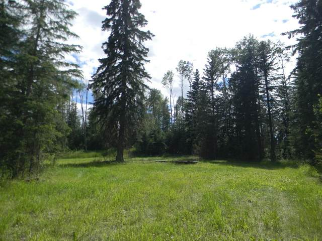 123 Meadow Ponds Drive, Rural Clearwater County, AB T4T 1A7 (#A1021042) :: Calgary Homefinders