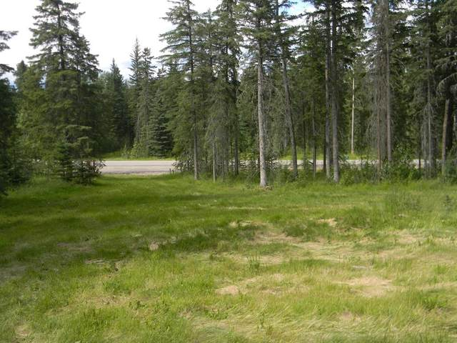 127 Meadow Ponds Drive, Rural Clearwater County, AB T4T 1A7 (#A1021050) :: Calgary Homefinders
