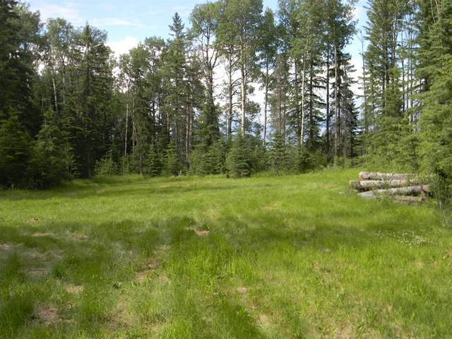 128 Meadow Ponds Drive, Rural Clearwater County, AB T4T 1A7 (#A1021093) :: Canmore & Banff