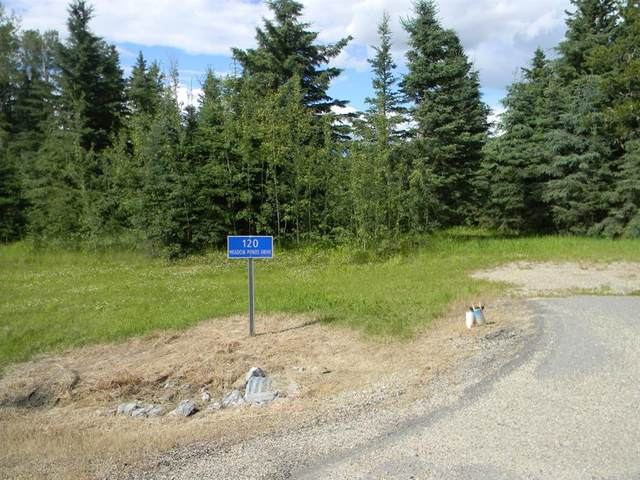 120 Meadow Ponds Drive, Rural Clearwater County, AB T4T 1A7 (#A1021107) :: Redline Real Estate Group Inc