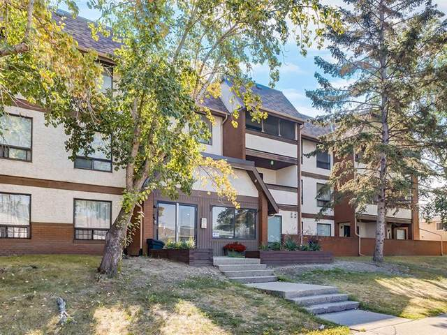 1712 38 Street SE #206, Calgary, AB T2A 1H1 (#A1021328) :: Team J Realtors
