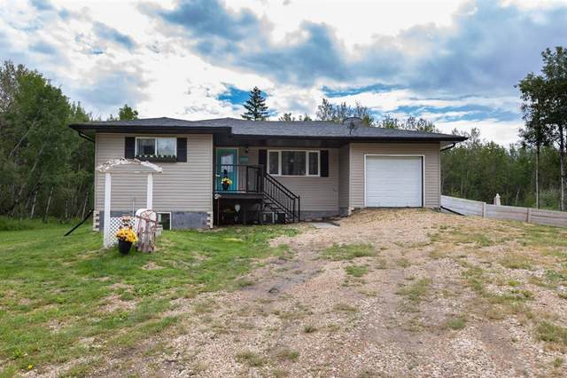 21071 Township Road 495, Rural Camrose County, AB T4V 2N1 (#A1021920) :: Canmore & Banff