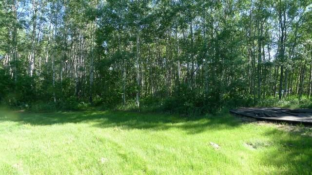 433042 Range Road 221, Rural Ponoka County, AB T4J 1R1 (#A1022142) :: Redline Real Estate Group Inc