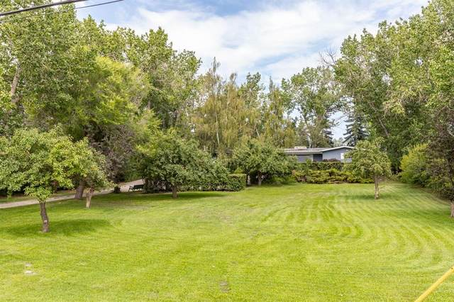 10122 Eamon Road NW, Calgary, AB T3G 5H1 (#A1022146) :: Calgary Homefinders
