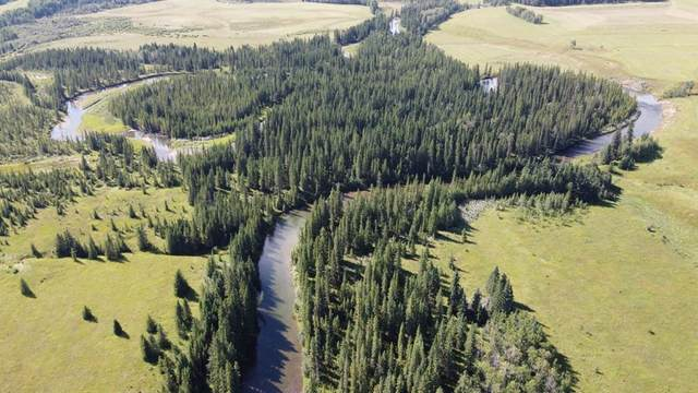 5-31539 Rge Rd 53C, Rural Mountain View County, AB T0M 0W0 (#A1024431) :: Canmore & Banff