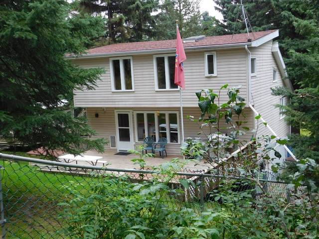 19 Raven Ridge Road, Rural Clearwater County, AB T0M 0M0 (#A1026920) :: Canmore & Banff