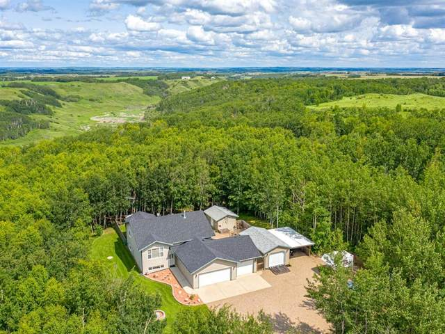 16 Big Gully Crescent, Rural Vermilion River, County of, AB T0B 1G0 (#A1027103) :: Canmore & Banff