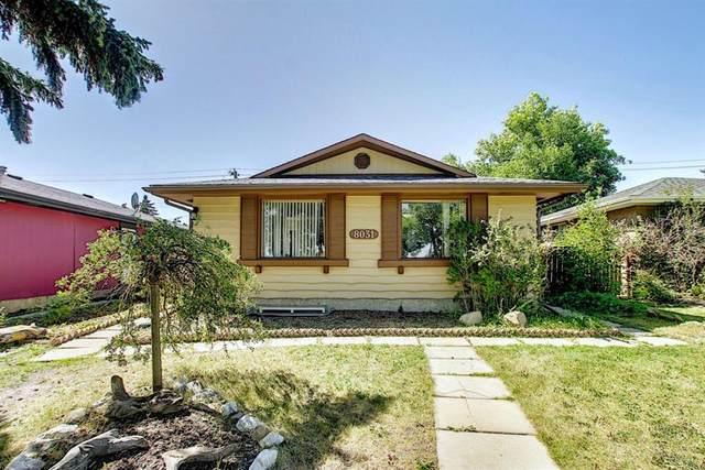 8031 Huntington Street NE, Calgary, AB  (#A1027212) :: Team J Realtors