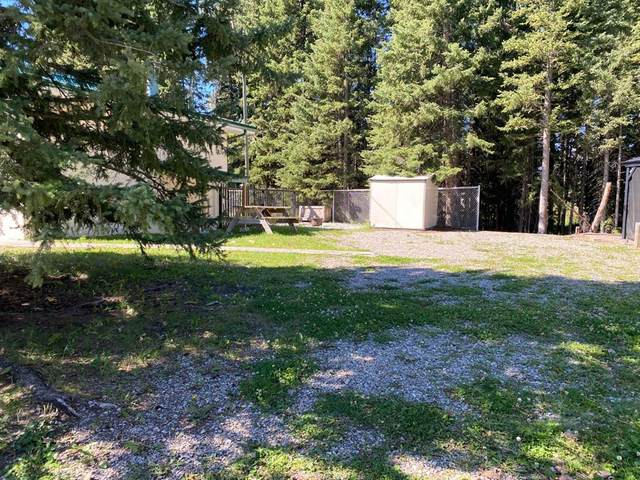 A Timber Road, Rural Mountain View County, AB T0M 1X0 (#A1027298) :: Team J Realtors