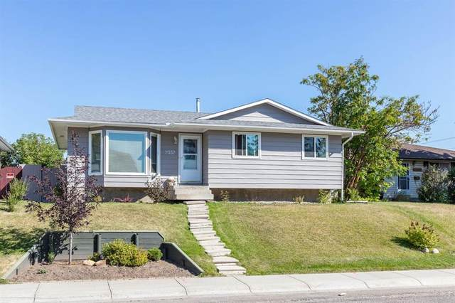 2032 Pinetree Crescent NE, Calgary, AB T1Y 1L7 (#A1028273) :: The Cliff Stevenson Group