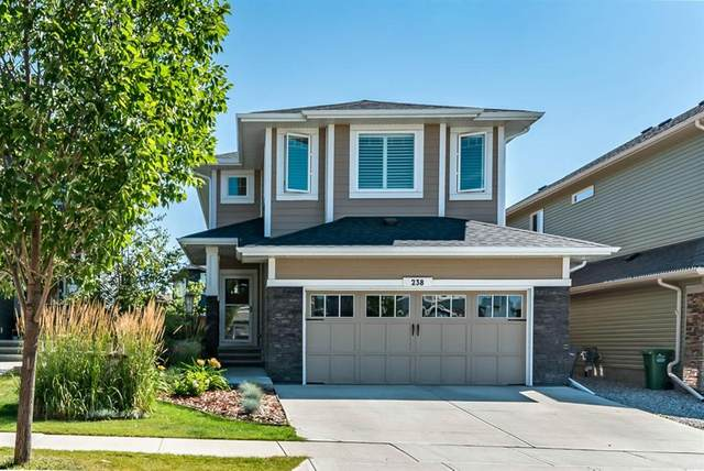 238 Mountain View Drive NW, Okotoks, AB T1S 0L7 (#A1028499) :: Canmore & Banff