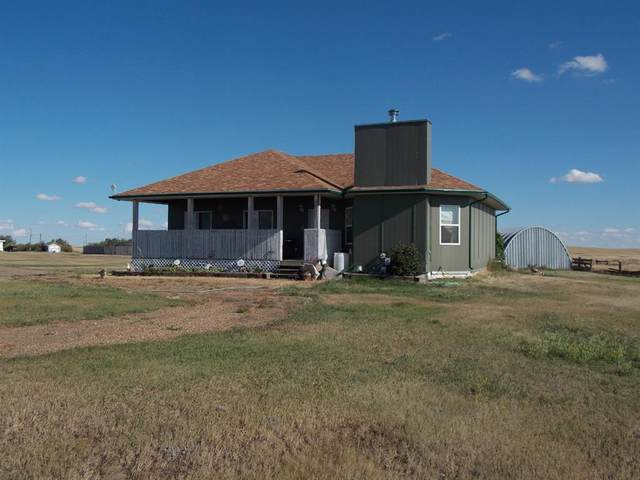 14541 Twp Rd 28-4 W, Hanna, AB T0J 1P0 (#A1029115) :: Redline Real Estate Group Inc