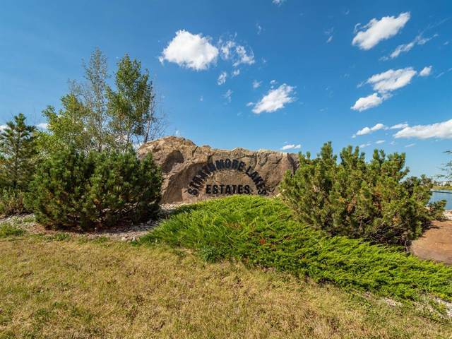 14 Lakes Estates Circle, Strathmore, AB T1P 0B7 (#A1029378) :: Canmore & Banff