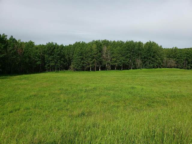 1 Bruhn Bend, Rural Ponoka County, AB T4S 0J0 (#A1029479) :: Team J Realtors