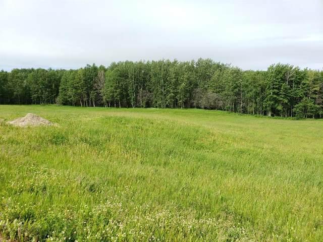 5 Bruhn Bend, Rural Ponoka County, AB T4S 0J0 (#A1029486) :: Team J Realtors