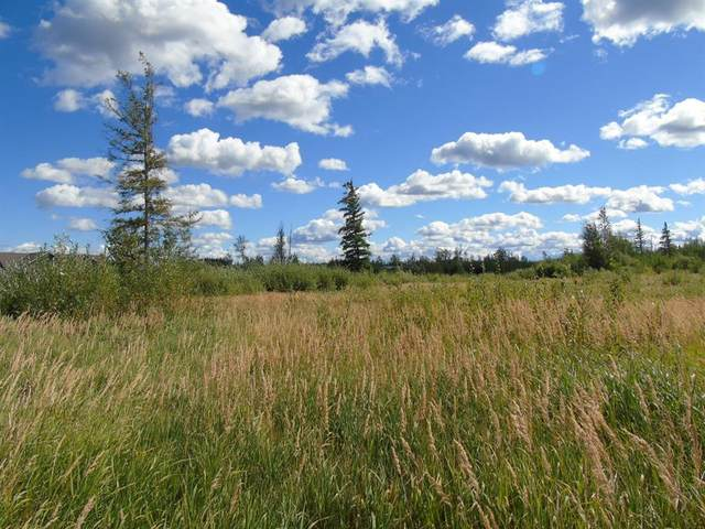 Block 3 Lot 6 Aspen Lane, Rural Lesser Slave River No. 124, M.D. of, AB T0G 2A0 (#A1030428) :: Canmore & Banff