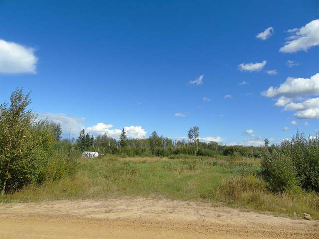 Block 2 Lot 3 Country Lane, Rural Lesser Slave River No. 124, M.D. of, AB T0G 2A0 (#A1030433) :: Canmore & Banff