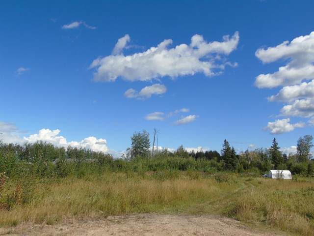 Block 2 Lot 1 Country Lane, Rural Lesser Slave River No. 124, M.D. of, AB T0G 2A0 (#A1030437) :: Canmore & Banff