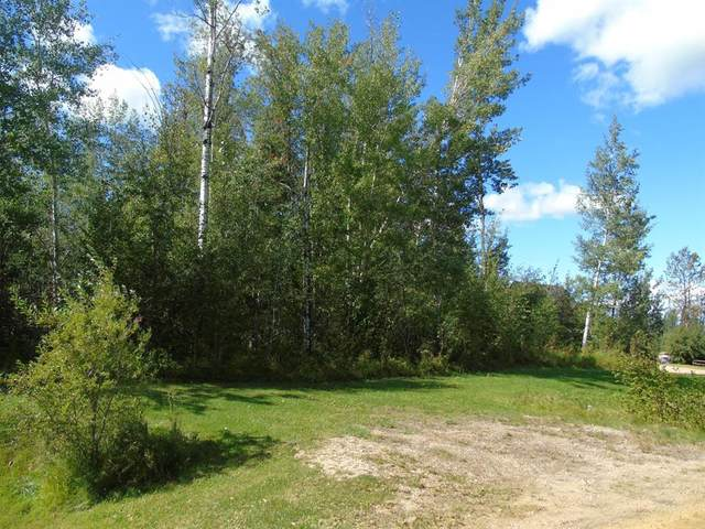 Block 1 Lot 2 Country Lane, Rural Lesser Slave River No. 124, M.D. of, AB T0G 2A0 (#A1030442) :: Canmore & Banff