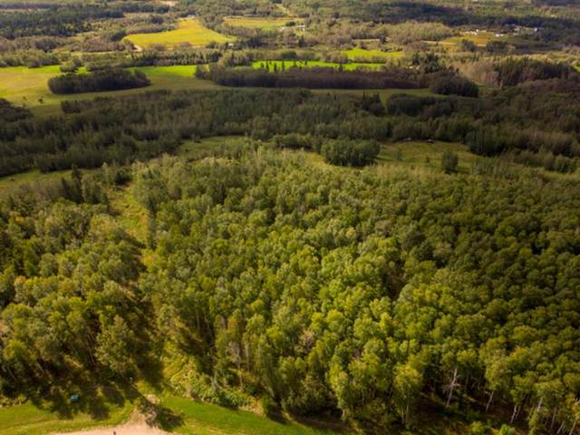 17 Bison Ridge, Rural Athabasca County, AB T9S 2B5 (#A1031515) :: Team J Realtors
