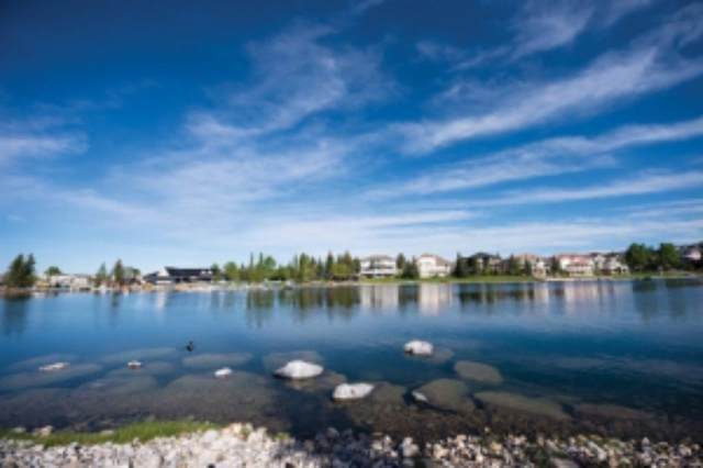 950 Arbour Lake Road NW #1318, Calgary, AB T3G 5B3 (#A1031599) :: Team J Realtors