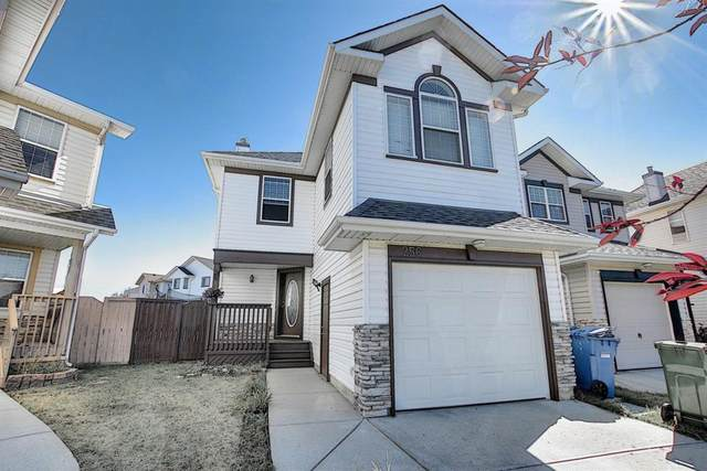 256 Coral Springs Mews NE, Calgary, AB T3J 3R9 (#A1032389) :: Calgary Homefinders