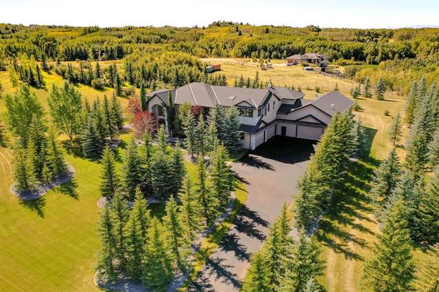 31 South Valley Boulevard, Rural Rocky View County, AB T3R 1H8 (#A1033274) :: Team J Realtors
