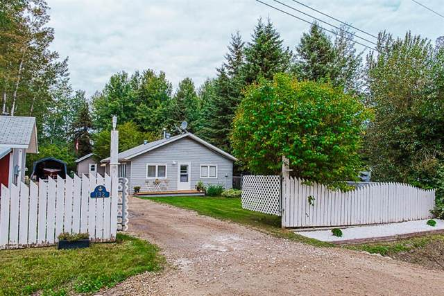 132 The Narrows, Rural Greenview No. 16, M.D. of, AB T0H 3N0 (#A1033657) :: The Cliff Stevenson Group