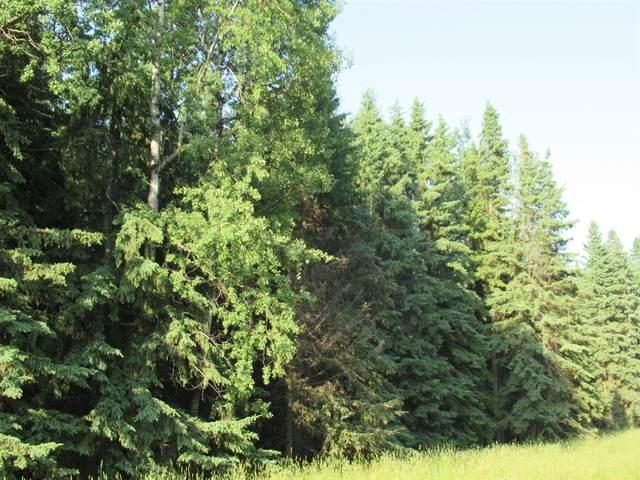 40500 43-0 Township, Rural Ponoka County, AB T0C 2J0 (#A1034520) :: The Cliff Stevenson Group
