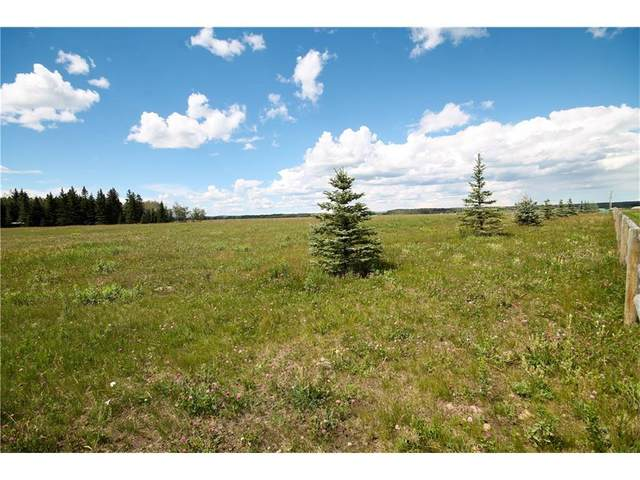 #2 Country Haven Acres, Sundre, AB T0M 1X0 (#A1034867) :: The Cliff Stevenson Group
