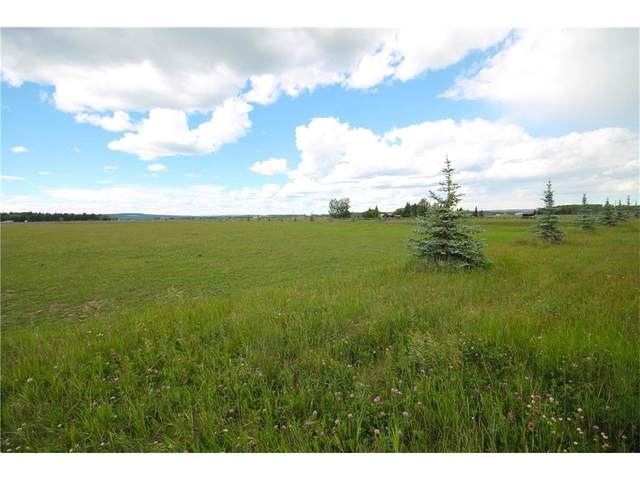 #8 Country Haven Acres, Sundre, AB T0M 1X0 (#A1034874) :: The Cliff Stevenson Group